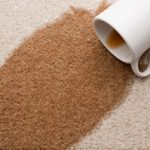 Carpet Cleaning Alamo CA